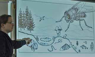 Photo of Amanda Goth showing slide of aquatic invertebrates