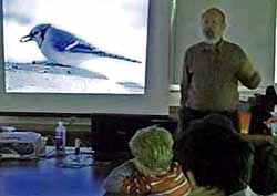 photo of Roy John showing Blue Jay