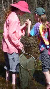 Photo of two girls examining aquatic creature