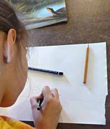 photo of girl drawing a turtle