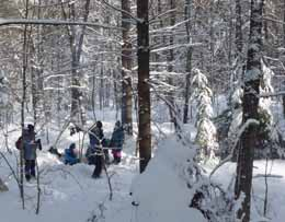 Photo of lunch in the snowy woods