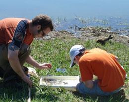 Photo of Wayne Knee and boy examining aquatic life