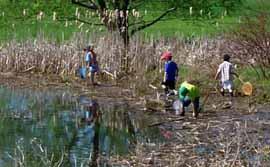 Photo of children wading in swamp