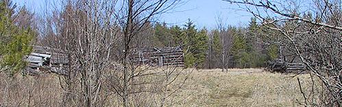 Photo of abandoned log buildings at Pakenham in 2004