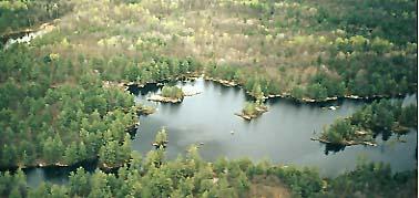 Aerial view of favourite camping pond at Pakenham