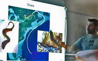 Photo of Nick Lapointe explaining eel life cycle