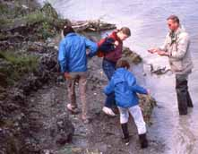 Photo of Dick Harrington leading search for Green's Creek fossils in 1986