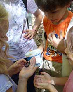 Photo of kids with giant millipede