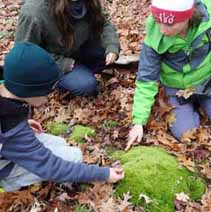 Photo of Macoun Club members touching Broom Moss