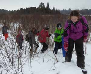 Photo of children approaching beaver lodge