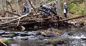 Photo of group struggling across a log jam