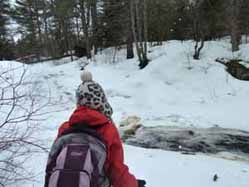 Photo of half-frozen cree