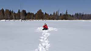 Photo of Macoun Club member on unbroken expanse of snow