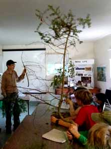 Photo of Rob Lee and Macoun members discussing sample trees
