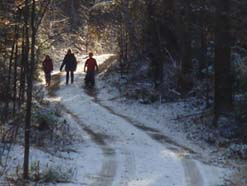 Photo of a winter trail winding past rising ground