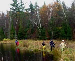photo of Macouners walking crest of old beaver dam