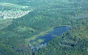 Aerial view of Macoun Study Area