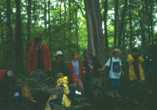 Photo of group on White Ash log