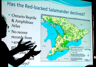 Photo of Red-backed Salamander distribution in southern Ontario