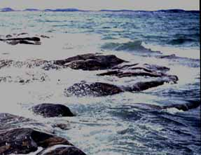 Photo of the Champlain Sea shore as it might have been
